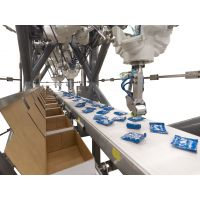 Machine vision processing made easy through robotics for packaging.