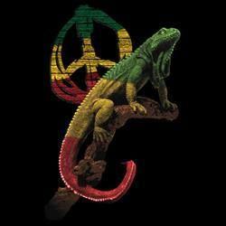Image Jamaican Of Rasta Lion   ... Rasta Lion Haile Selassie Bobo Ashanti Reggae Jamaica Island   eBay