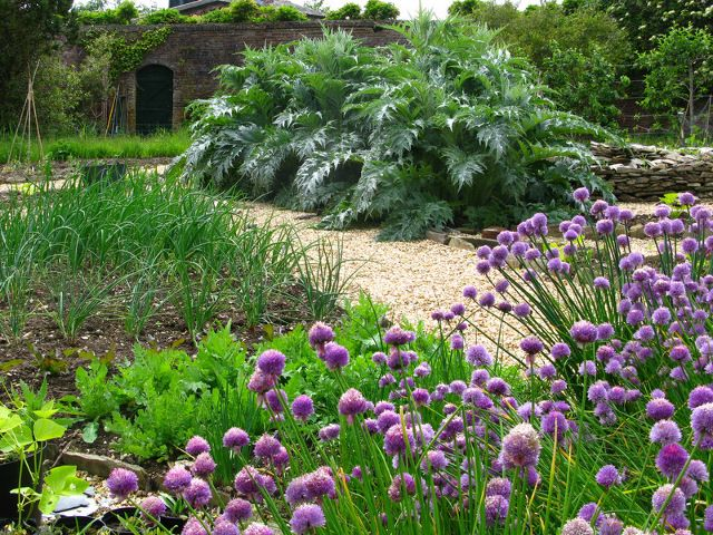 garden design by cornwall designer based in falmouth