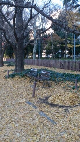 Bench on the yellow carpet at Gaien