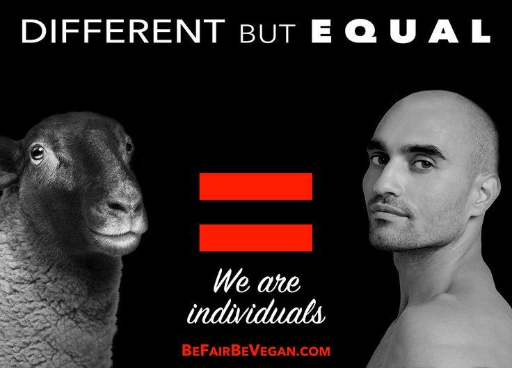 BE FAIR BE VEGAN - największa wegańska kampania billboard'owa EVER!  Kampania jest poruszająca.  Pokazuje zwierzęta jako czujące, rozumiejące i kochające.  Mówi o nich:są jak my, inne, a jednak takie same .  Czytaj więcej tutaj>> http://dorotajaworska.natemat.pl/187733,be-fair-be-vegan-najwieksza-weganska-kampania-billbordowa-ever   #befairbevegan #weganizm #kampaniabillboardowa #timeswuere