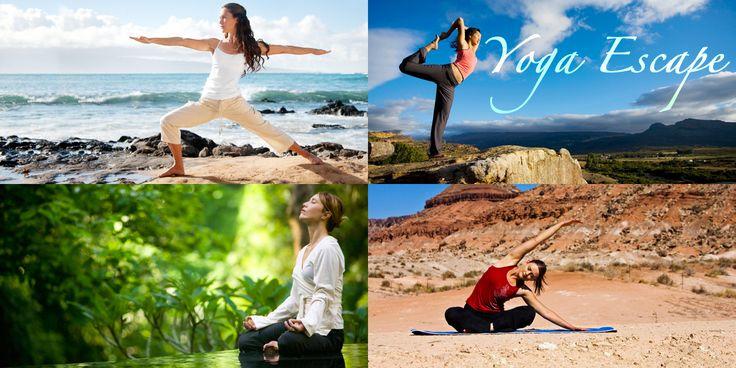 Découvrir ou approfondir le yoga et se ressourcer dans des lieux apaisants en pleine nature. Cours de Ashtanga, Hatha, Vinyasa, et Kundalini Yoga.