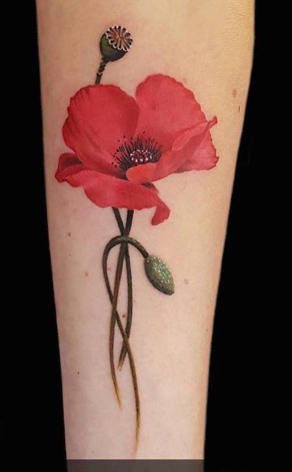 Poppy Tattoo By Lainy Limited Availability At Holy Trinity Tattoo Studio Poppies Tattoo Tattoos Trinity Tattoo