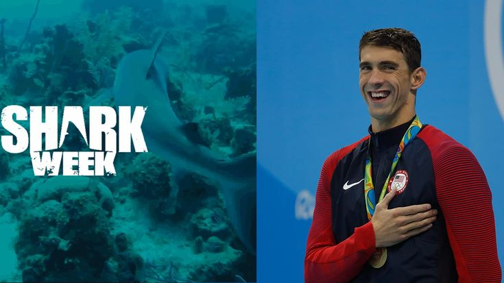 Discovery Channel's 'Shark Week' Will Be Joined By Olympic Champion Michael Phelps