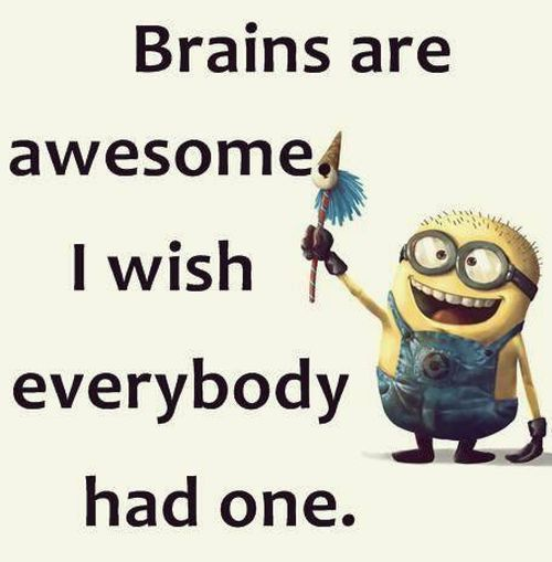 Despicable Me funny minion quotes of the day 005