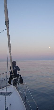 Walforschung - © OceanCare