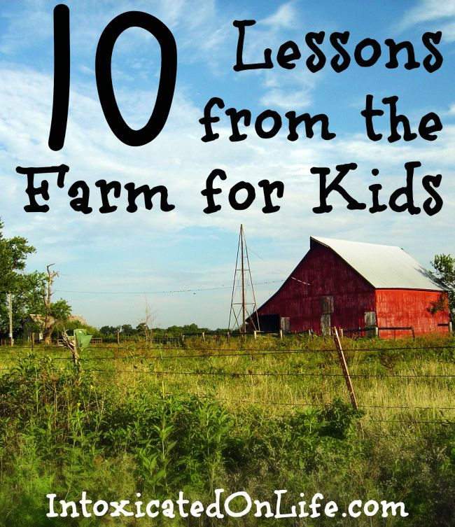 10 Lessons from the Farm for Kids (find out how your kids can learn these lessons too!)