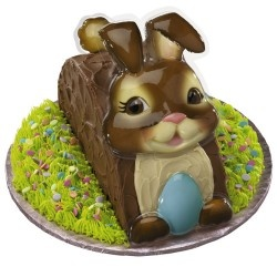 27 best easter gifts ideas images on pinterest easter gift brown easter bunny cake decoration 149 httpbuy gifts negle Image collections