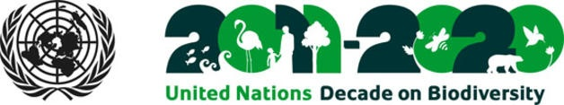08 octubre 2012 23:34:00 Action in support of Biodiversity urgently needed: UN Meeting on Biodiversity opens in Hyderabad India /
