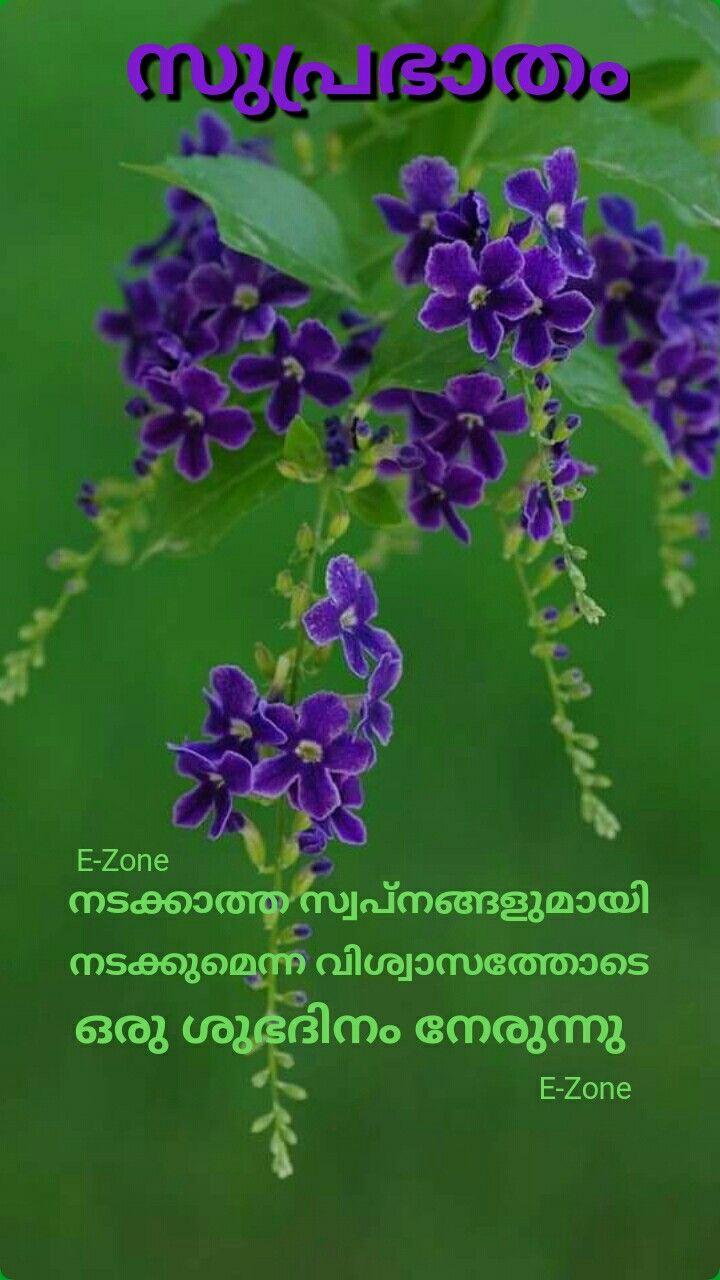 Pin By Eron On Good Morning Good Morning Wishes Morning Wish Malayalam Quotes