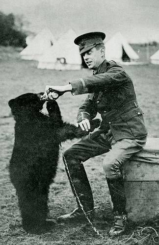 """Canadian Army Lieutenant Harry Colebourn bought a bear cub for $20 from a hunter. Named her Winnipeg, and smuggled her to England where """"winnie became his militia's mascot. He eventually donated her to the London Zoo where she became a favorite of Christopher Robin Milne, the son of a local playwright.  You know the rest."""