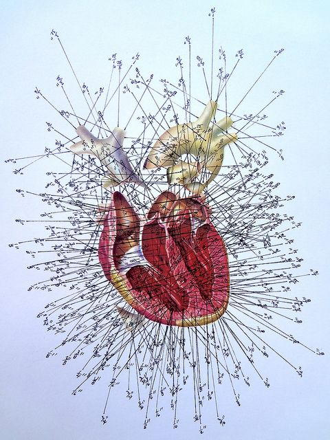 Measured Heart in Inches by Enrique Castrejon.