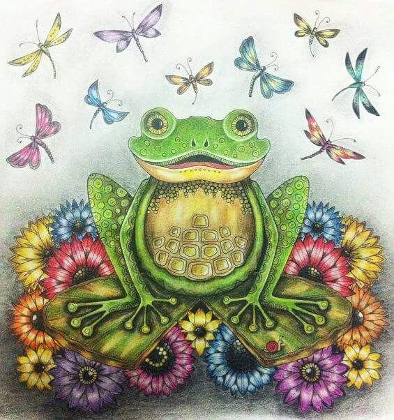 Frog Enchanted Forest Sapo Floresta Encantada Johanna Basford Coloring BookJohanna