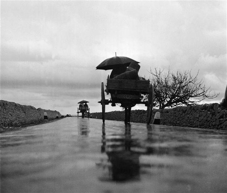 Charrette sur une route près de Modica, vers 1950, Fosco Maraini