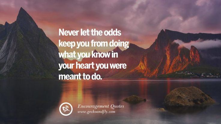 Never let the odds keep you from doing what you know in your heart you were meant to do.  40 Words Of Encouragement Quotes On Life, Strength & Never Giving Up