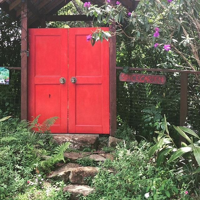 D I S C O V E R paths that lead to intriguing new worlds. We love the possibilities that lie behind a set of inviting doors- especially red ones.