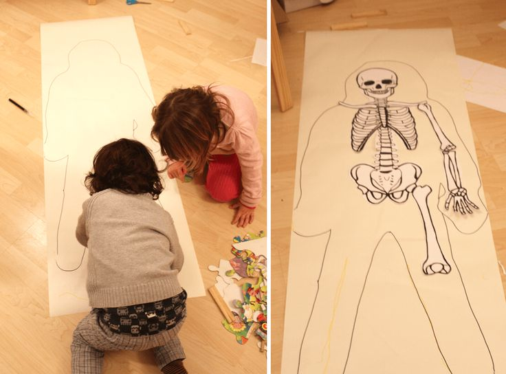Esqueleto tamaño real, imprimible gratis para hacer actividades educativas…