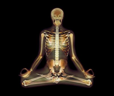 X-Ray Yoga ~ Science Storiented  Lotus