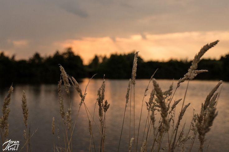 Summer sunset by Joram Krol on 500px