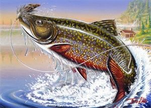 Brook trout art trout fish pinterest trout fish and for Best trout fishing in ct