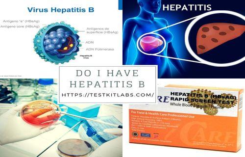 Do I have Hepatitis BTest Kit Labs