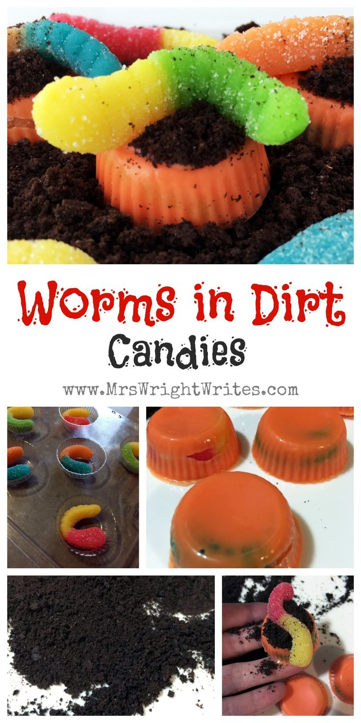 How to catch worms easy recipes