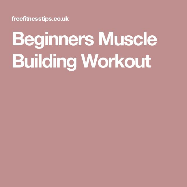 Beginners Muscle Building Workout