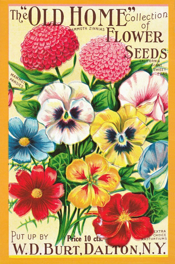The Garden Diaries | The ups and downs of the gardening world ...