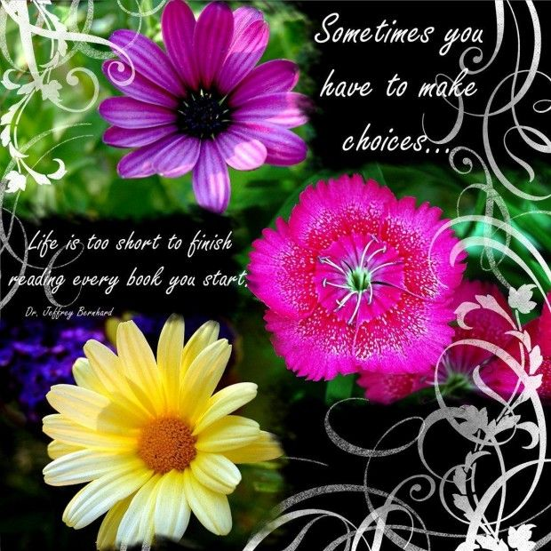 37 Best Flowers And Roses Quotes Images On Pinterest