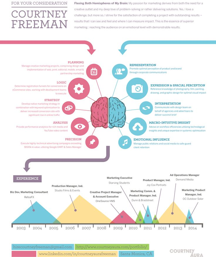 CourtneyAuraFreemanInfographicjpg Infographic Visual Resumes - infographic resume examples