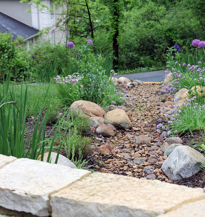 Dry river bed with native plants creek bed gardens