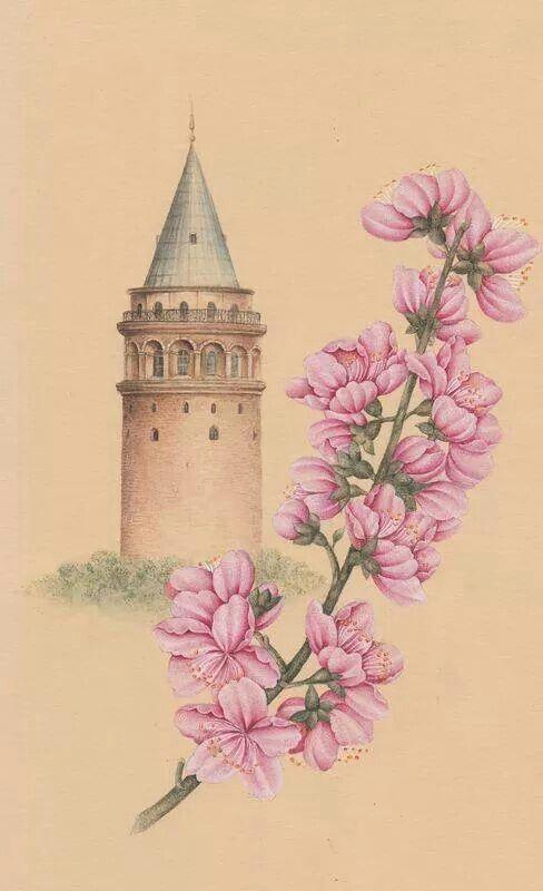 Reza Zolghard Galata Kulesi