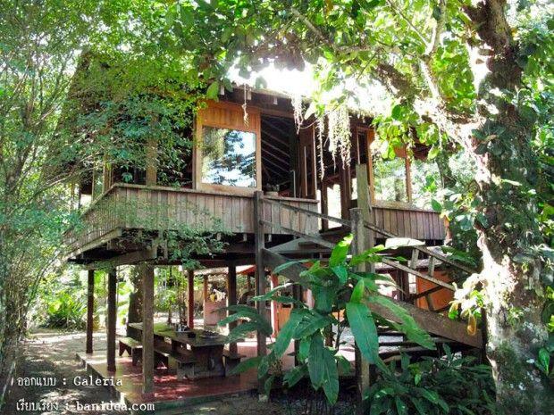 traditional thai home designs (บ้านไม้ยกพื้นสูง)