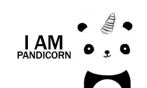 adorable, black and white, cartoon, cute, kawaii, panda, tumblr ...