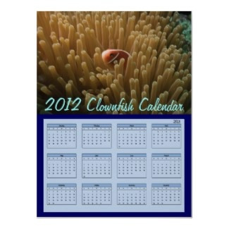 2013 Calendar featuring a clownfish nestled in its anemone home