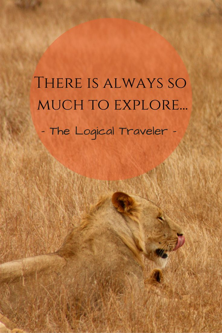 There is always so  much to explore... - The Logical Traveler