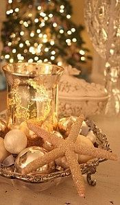 starfish are fabulous for holiday decorations