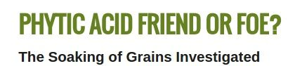 """Phytic acid is considered by some as an anti- nutrient component found in the bran portion of all grains and beans.  It is being taught that """"untreated"""" phytic acid can combine with calcium, magnesium, copper, iron and especially zinc in the intestinal tract and block their absorption.  It is being said that a diet high in unfermented whole grains supposedly can lead to serious mineral deficiencies and bone loss... http://info.breadbeckers.com/phytic-acid/"""