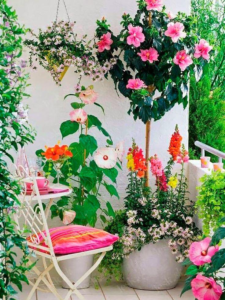 150 best images about terrazas on pinterest for Terrazas decoradas