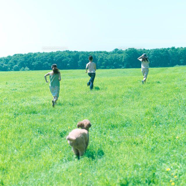草原を走る犬と女性達 (c)hororo style