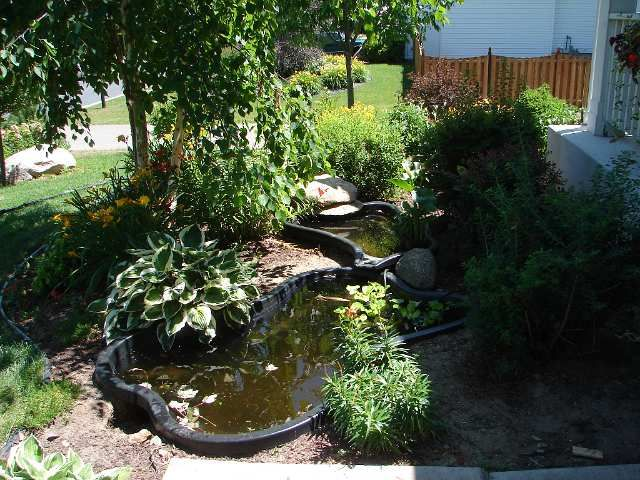A preformed pond before its edges were hidden with rock on for Plastic pond ideas