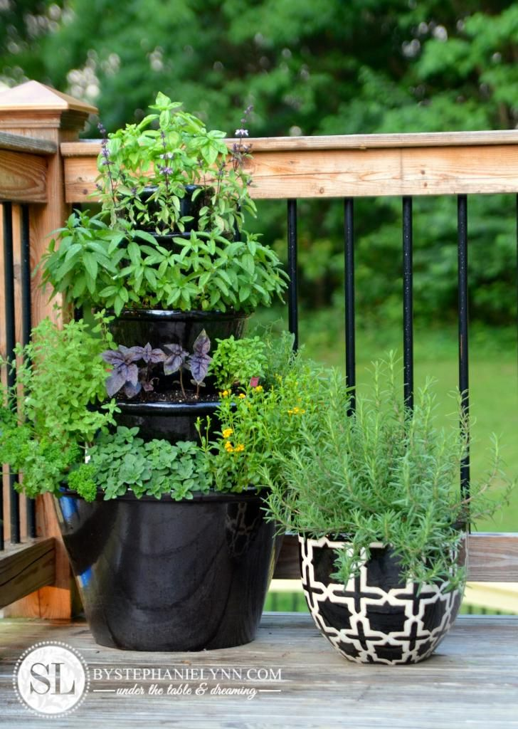 Tiered Herb Garden.  I have got to do this for all of the herbs that I love to use.  What a compact planter and I can plant it close by.