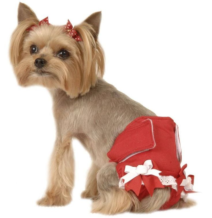 Washable Dog Diapers for Female Dogs