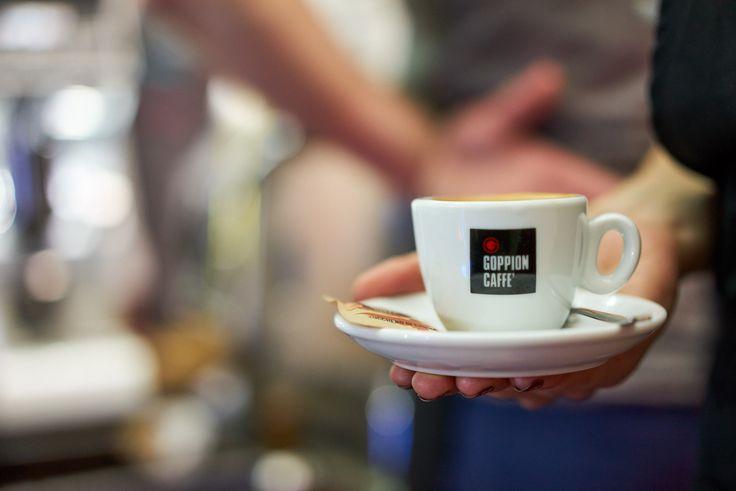 PGNiG Transatlantyk Festival 2016 w Łodzi Kino Kulinarne by Libra Cafe