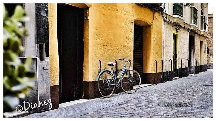 https://flic.kr/p/SZwmDr   #bikes #igerscadiz #streephotography #OK_andalucia #colours #cafelevante #bicicleta #ok_streets #fuji #xt_10 #ok_cadiz #andalucía #IGERSANDALUCIA #andaluciaviva #urbanscape #urbanstreet #bestpic #gf_streets #instalike #cadizfornia #turismo #travel #cadiz