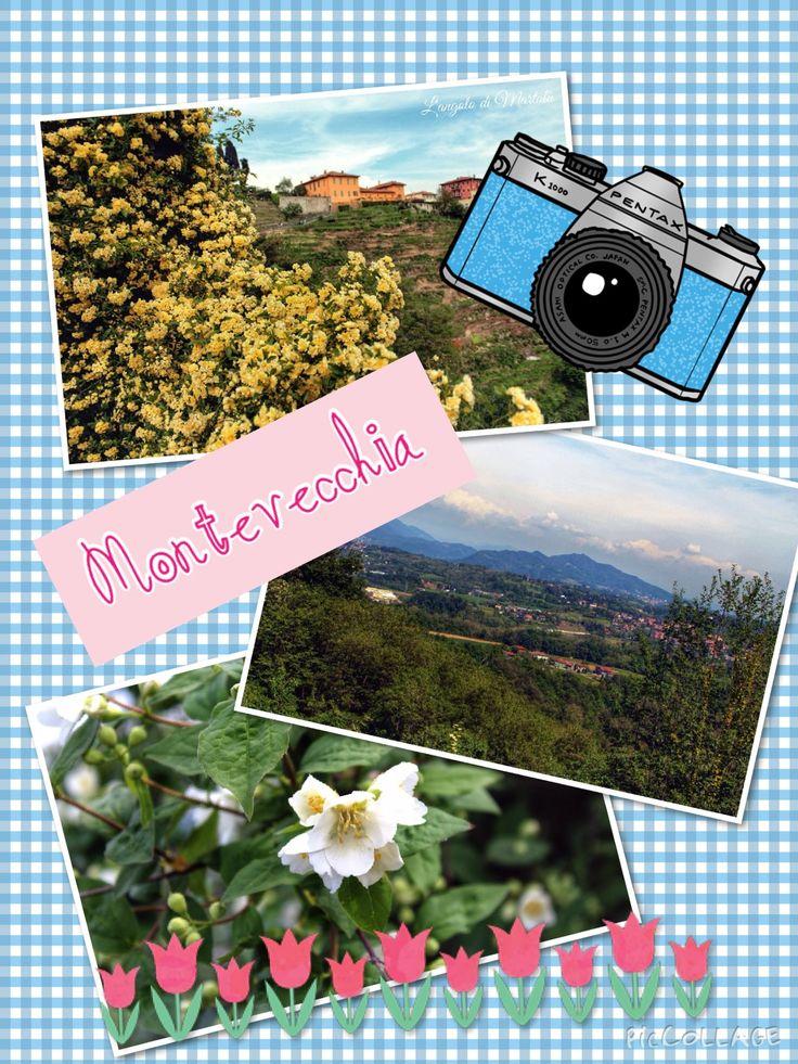 Gita a Montevecchia!