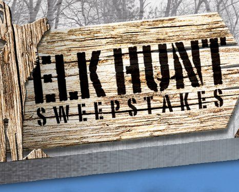 Win A Chance To Hunt With Clint Bowyer worth $10,132.00. Enter now for a chance to win a once in a lifetime fully guided muzzleloader Bull Elk Hunt with NASCAR Driver Clint Bowyer.    One lucky winner and guest will receive an all-expenses paid trip...