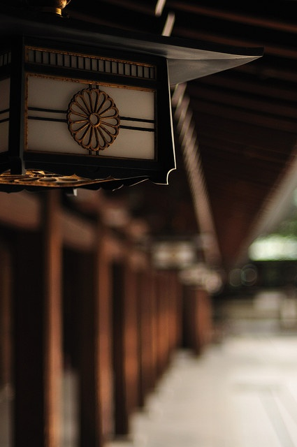 The Meiji Shrine is just one of many shrines in Japan, but it's particularly interesting if you're into modern Japanese history