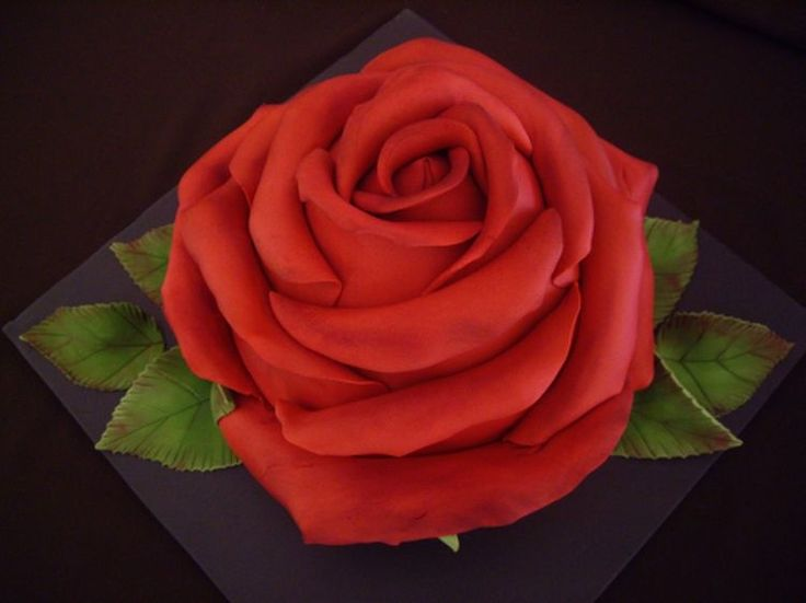 Large Rose Wedding Cake is made of sculpted marble mud cake and covered in moulded red rose petals on a black iced board.