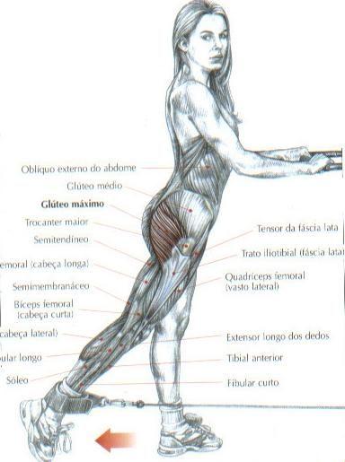 Extensão do quadril com polia baixa:  Este exercício trabalha os glúteos máximos e, com menor intensidade, os posteriores da coxa, exceto a cabeça curta do bíceps femoral. Ele permite a obtenção de uma boa silhueta, tornando a região do glúteo mais firme.